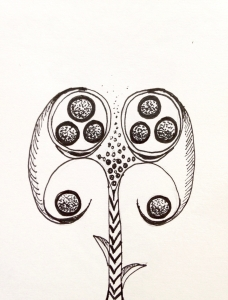 Flower sketch #6