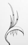 Flowerosity sketch #18
