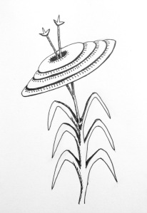 Flower sketch #16