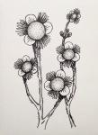 Flowerosity sketch #81